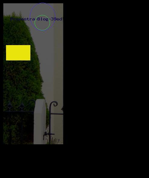 Provestra Blog